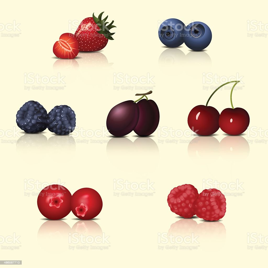 set of berries with reflection and shadow vector art illustration
