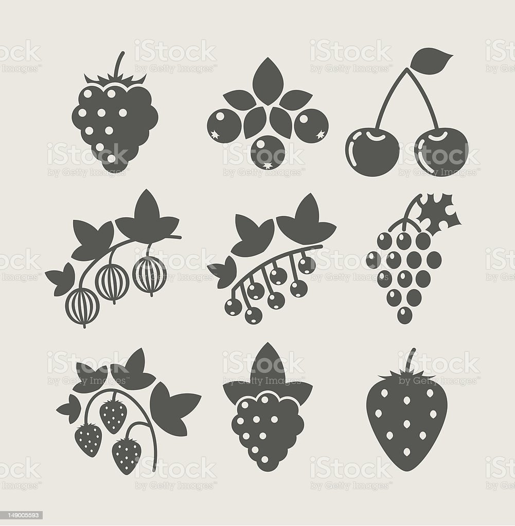 set of berry food icon vector art illustration