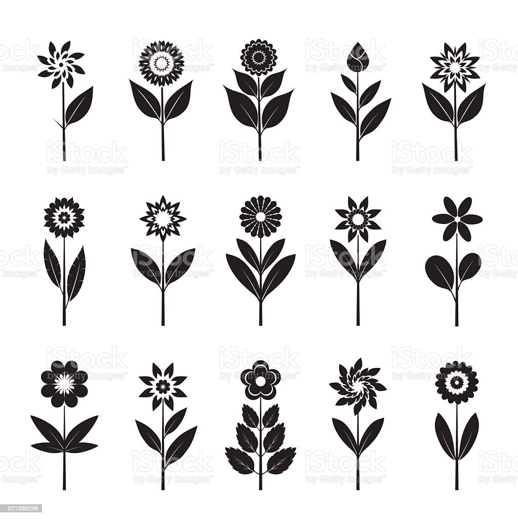 Set of black Flowers and Leafs. Vector Illustration. vector art illustration