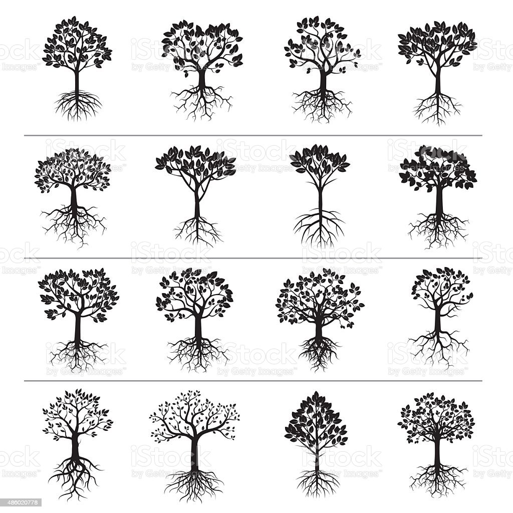 Set of Black Trees and Roots vector art illustration