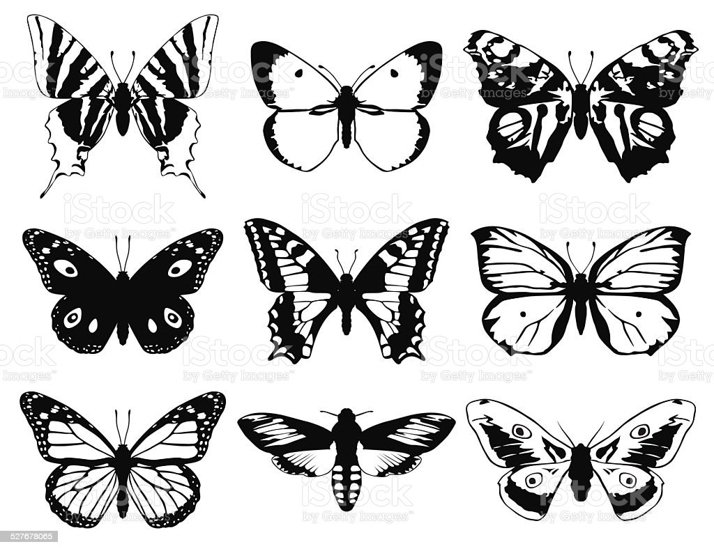 Set of butterflies silhouette with open wings. vector art illustration