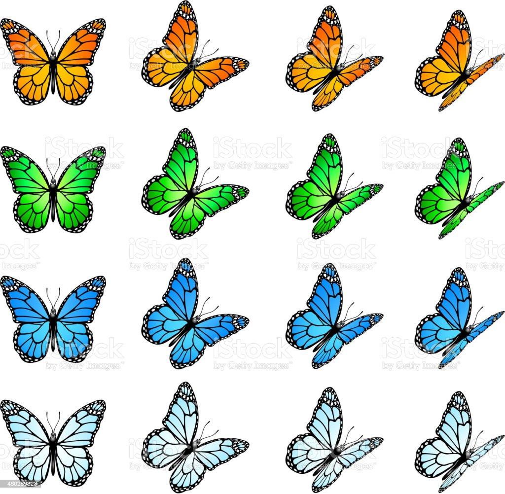 Set of butterflies vector art illustration