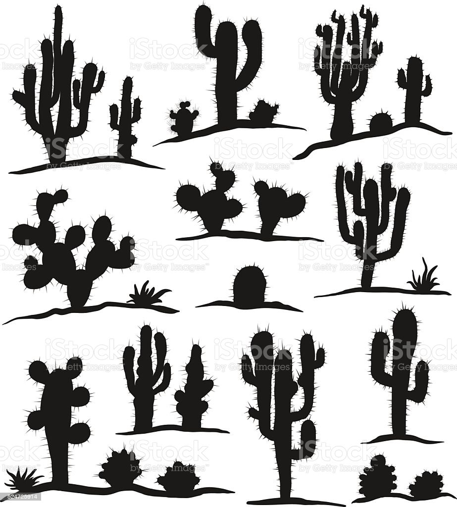 Set of cactuses isolated on white vector art illustration