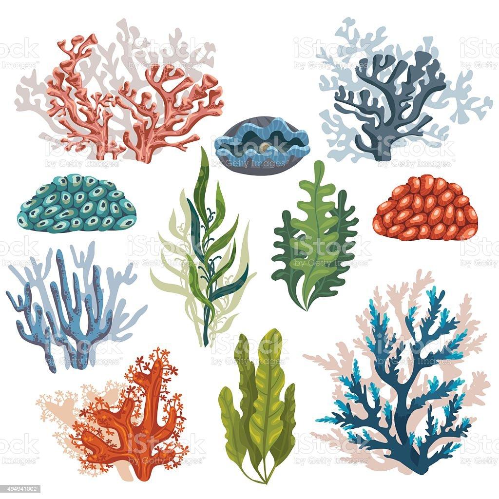 Set of cartoon corals. vector art illustration
