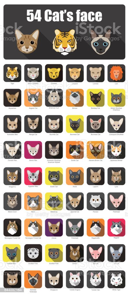 set of cat flat icons, vector illustration vector art illustration