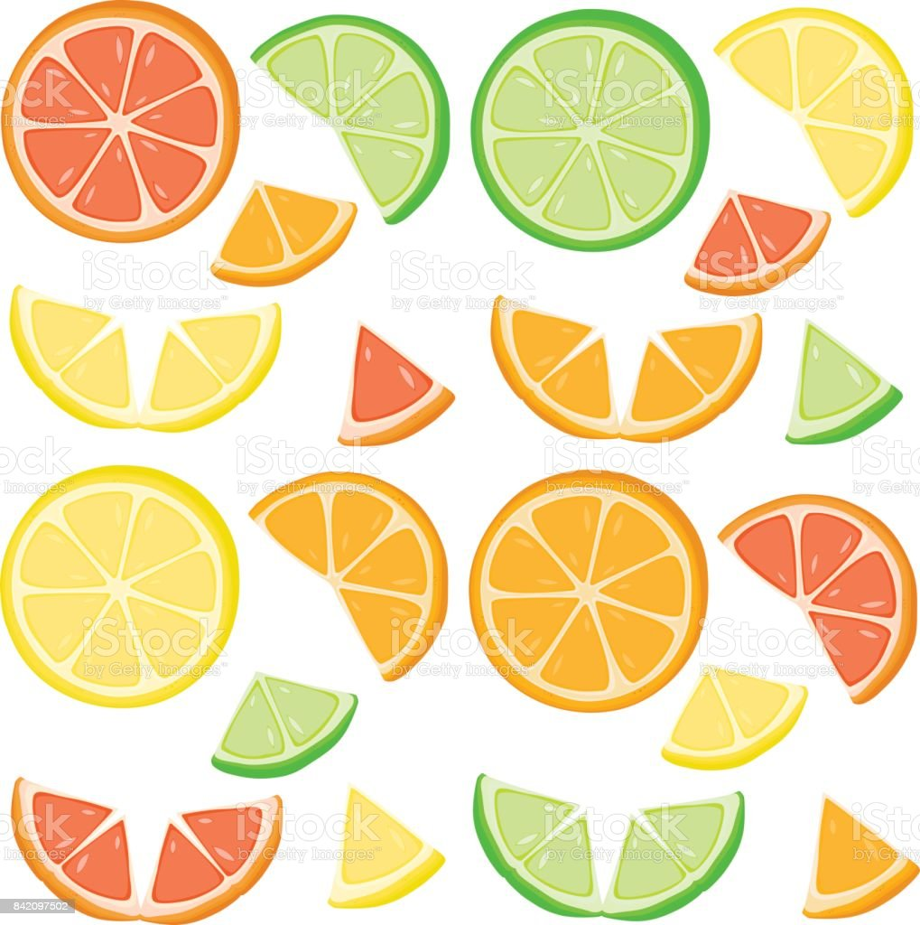 Set of citrus slices. vector art illustration