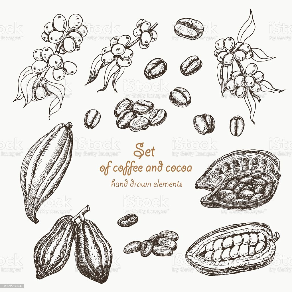 Set of coffee and cocoa in sketch style vector art illustration