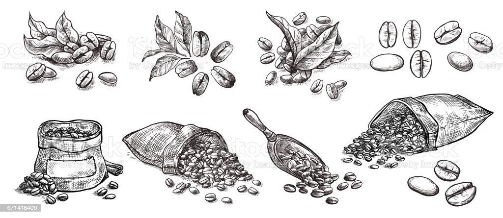 set of coffee beans in bag vector art illustration