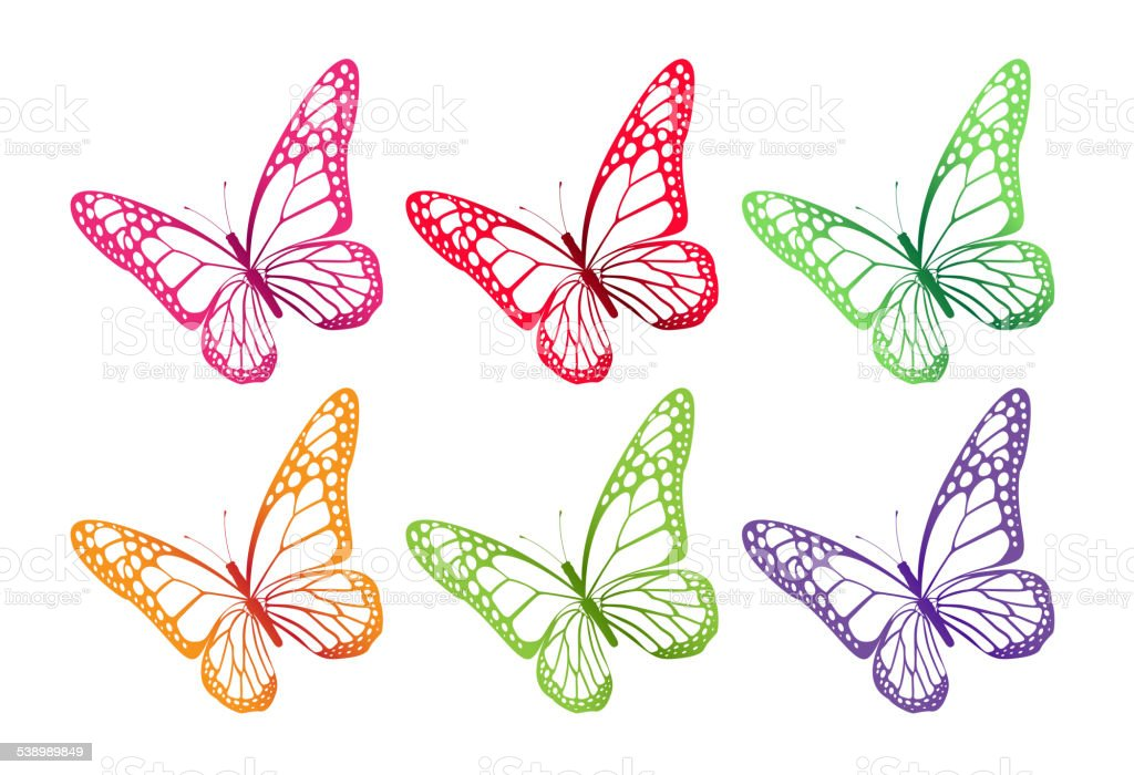 Set of Colorful Butterflies Isolated for Spring vector art illustration