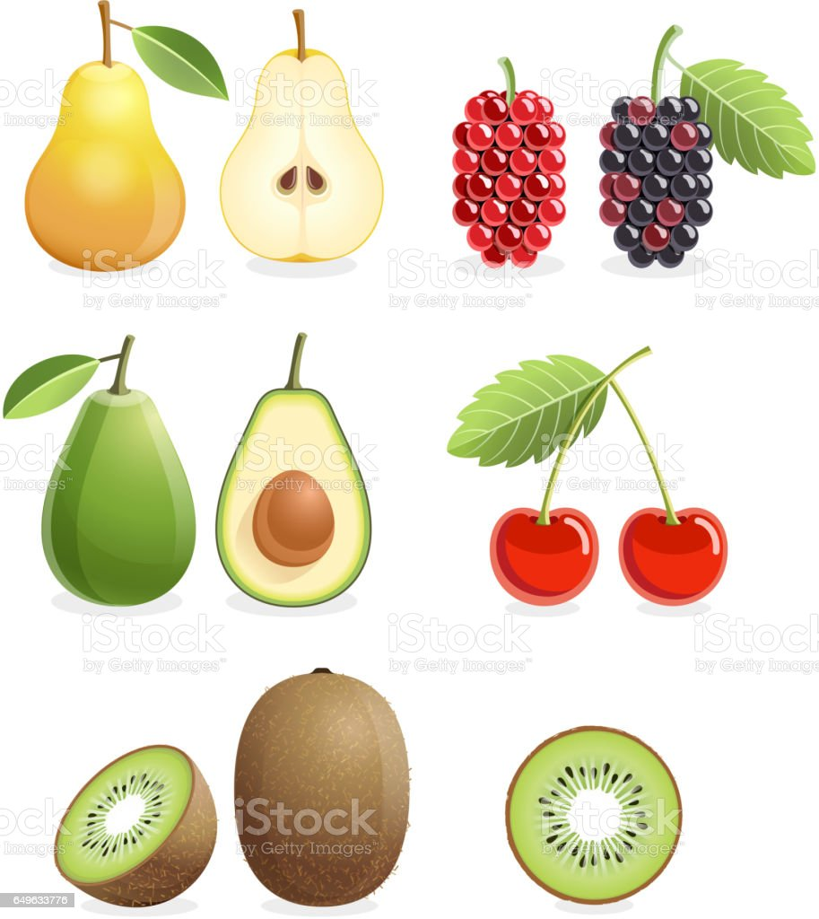 Set of colorful fruit icons. vector art illustration