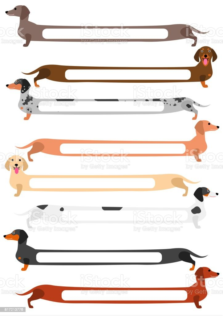 set of colorful long Dachshund with blank space vector art illustration