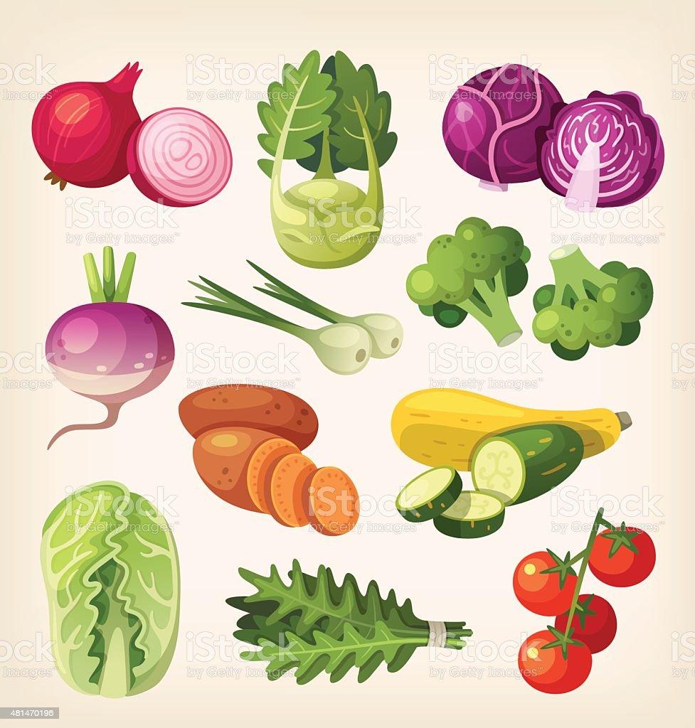 Set of colorful vegetables vector art illustration