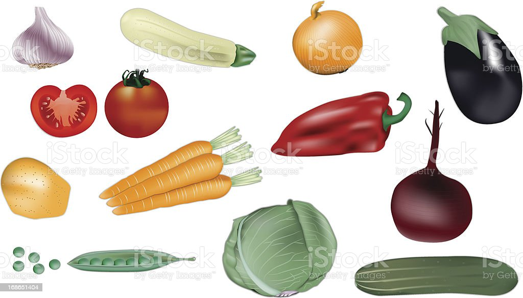 Set of colorful vegetables vector illustration royalty-free stock vector art