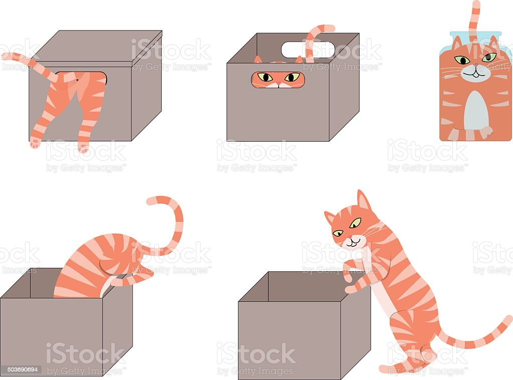 Set of cute cartoon cats in boxes vector art illustration