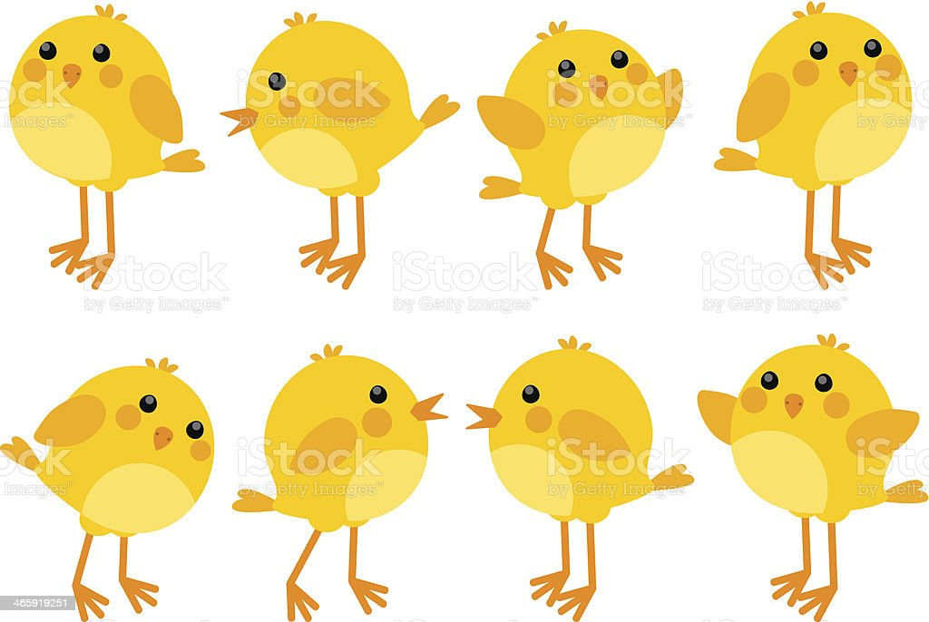 Set of cute little chickens vector art illustration