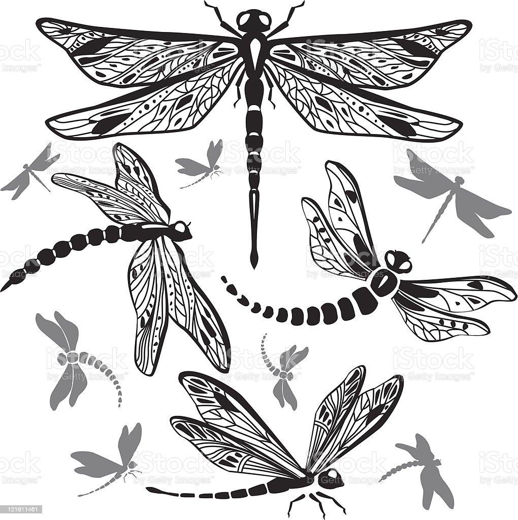 Set of decorative dragonflies vector art illustration