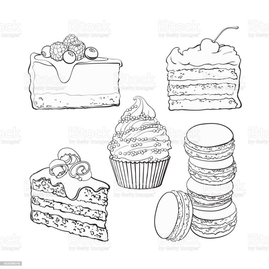 Set of desserts - cupcake, chocolate and vanilla cake, cheesecake, macaroons vector art illustration