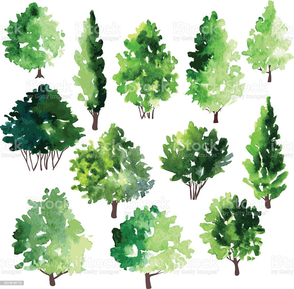 set of different deciduous trees vector art illustration