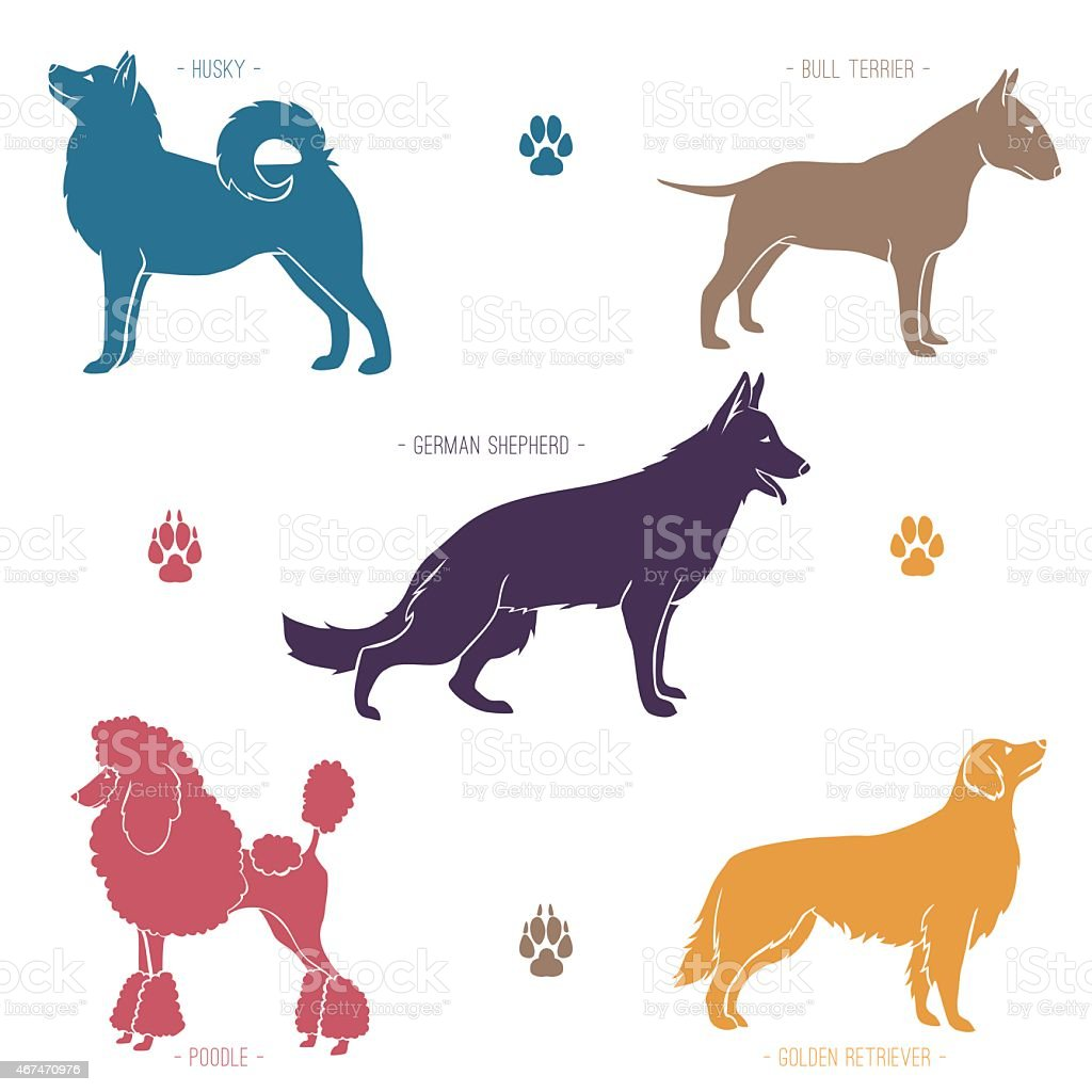 Set of different dog breeds silhouettes vector art illustration