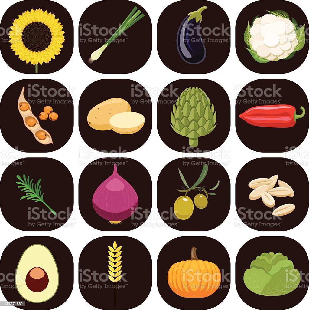 Set of different kinds of vegetables. vector art illustration