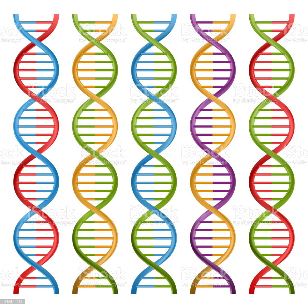 Set of DNA symbols for science and medicine. Vector design. vector art illustration