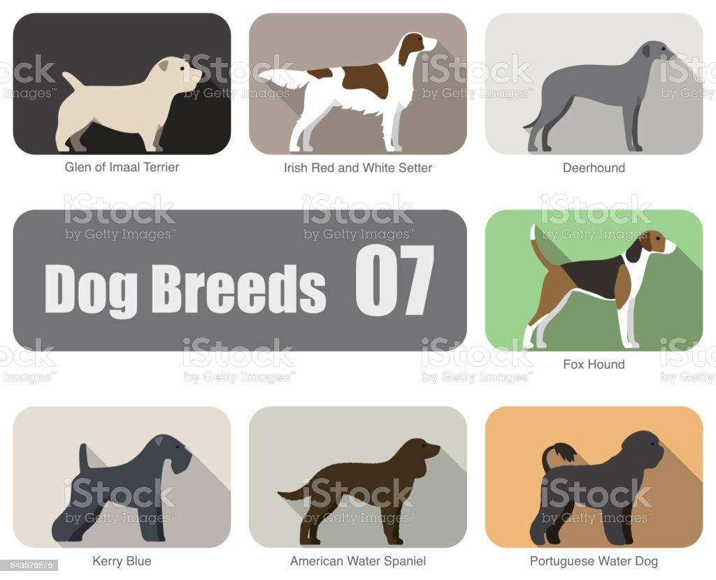 set of dogs, Cat breed face cartoon flat icon series vector art illustration