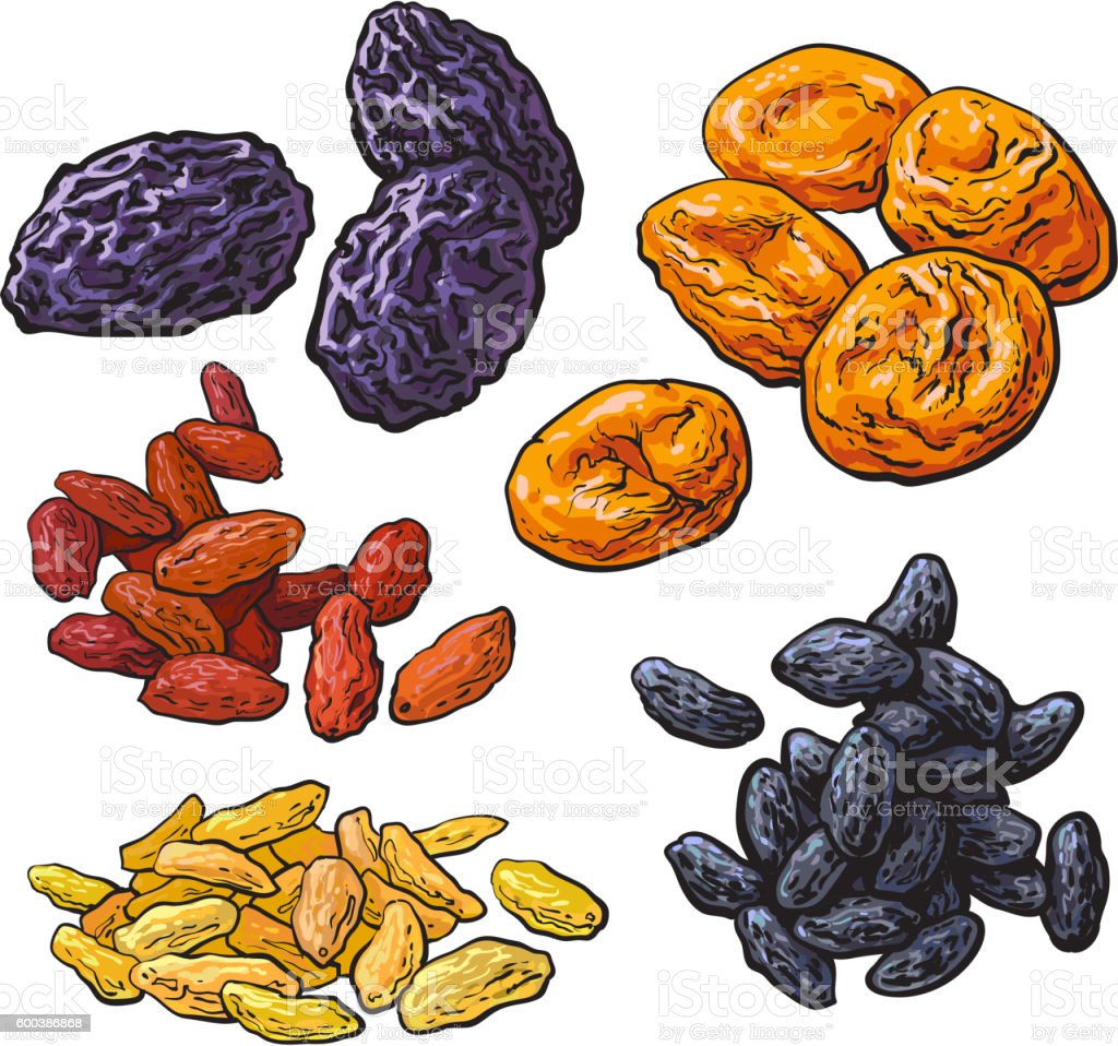 Set of dried fruits - prunes, apricots and raisins vector art illustration