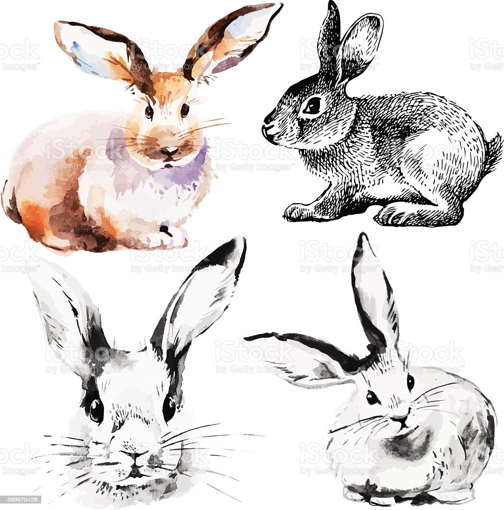 Set of Easter rabbits vector art illustration