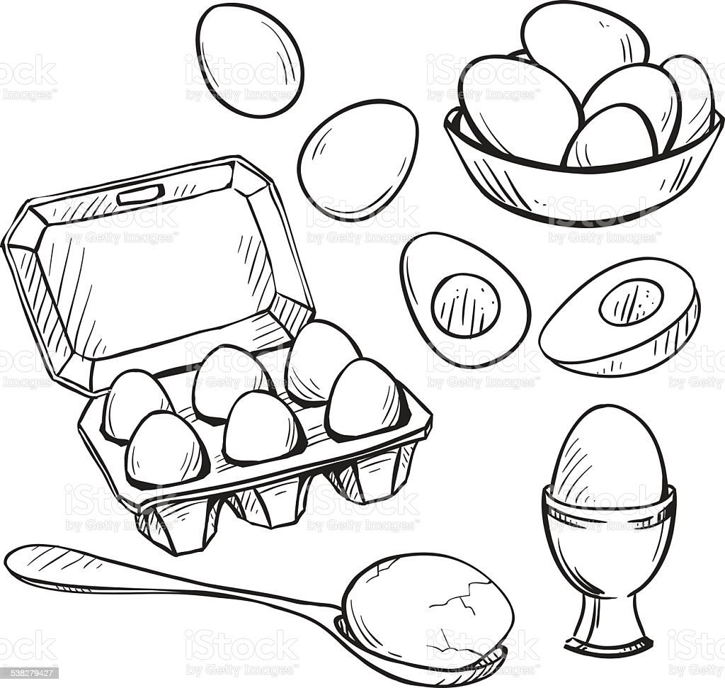 Set of eggs drawings. Hand drawn. Vector illustration. vector art illustration