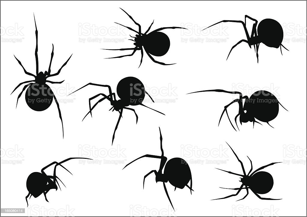 Set of eight vector scary spiders silhouettes royalty-free stock vector art