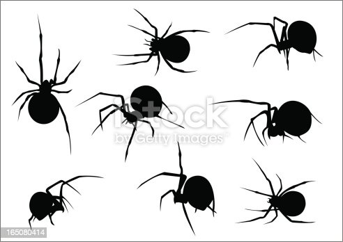 Set Of Eight Vector Scary Spiders Silhouettes stock vector ...
