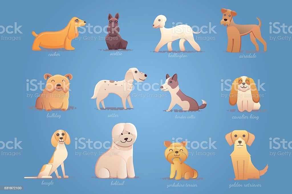 Set of english dogs vector art illustration