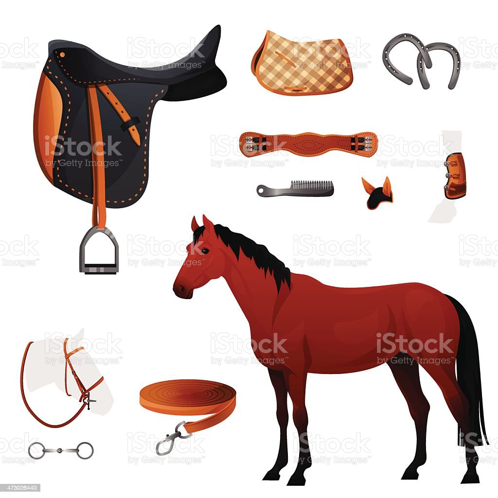 Set of equestrian equipment for horse vector art illustration