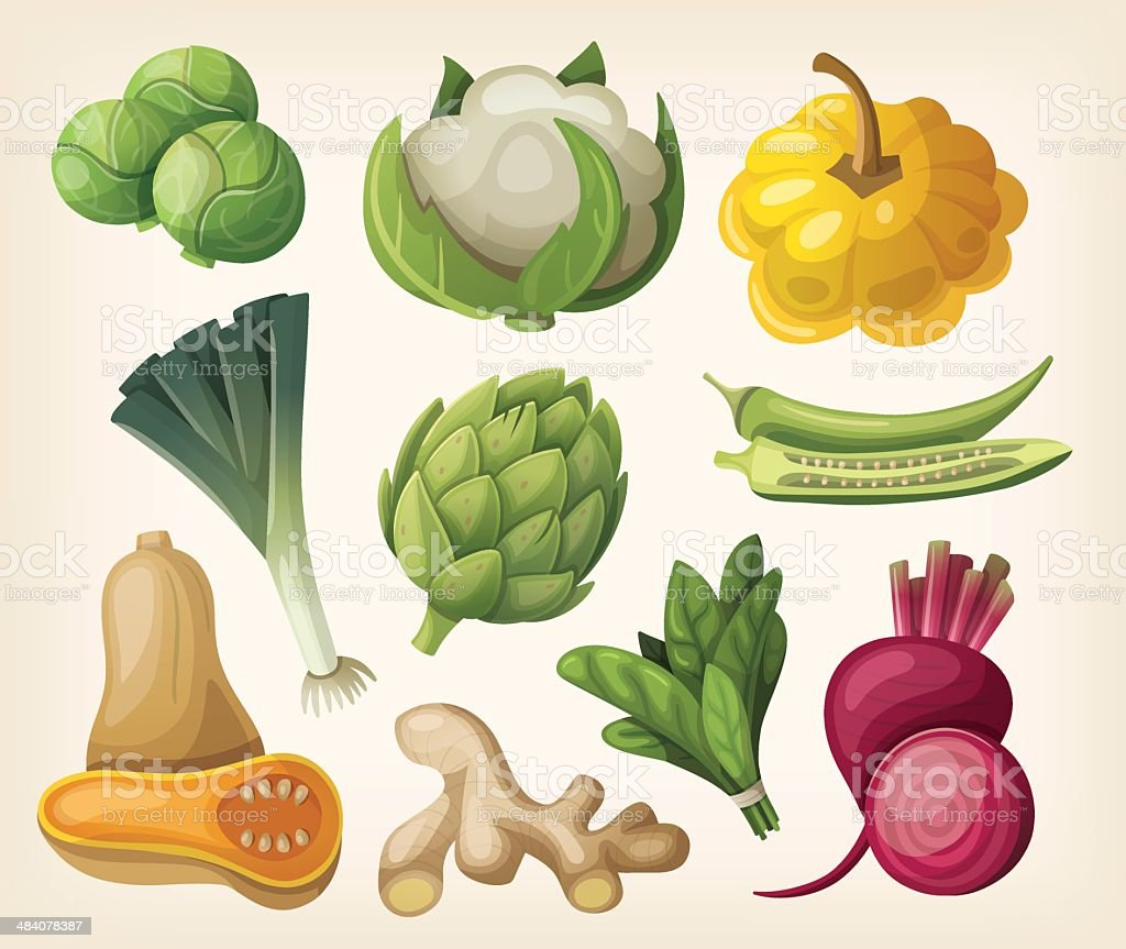 Set of exotic vegetables vector art illustration