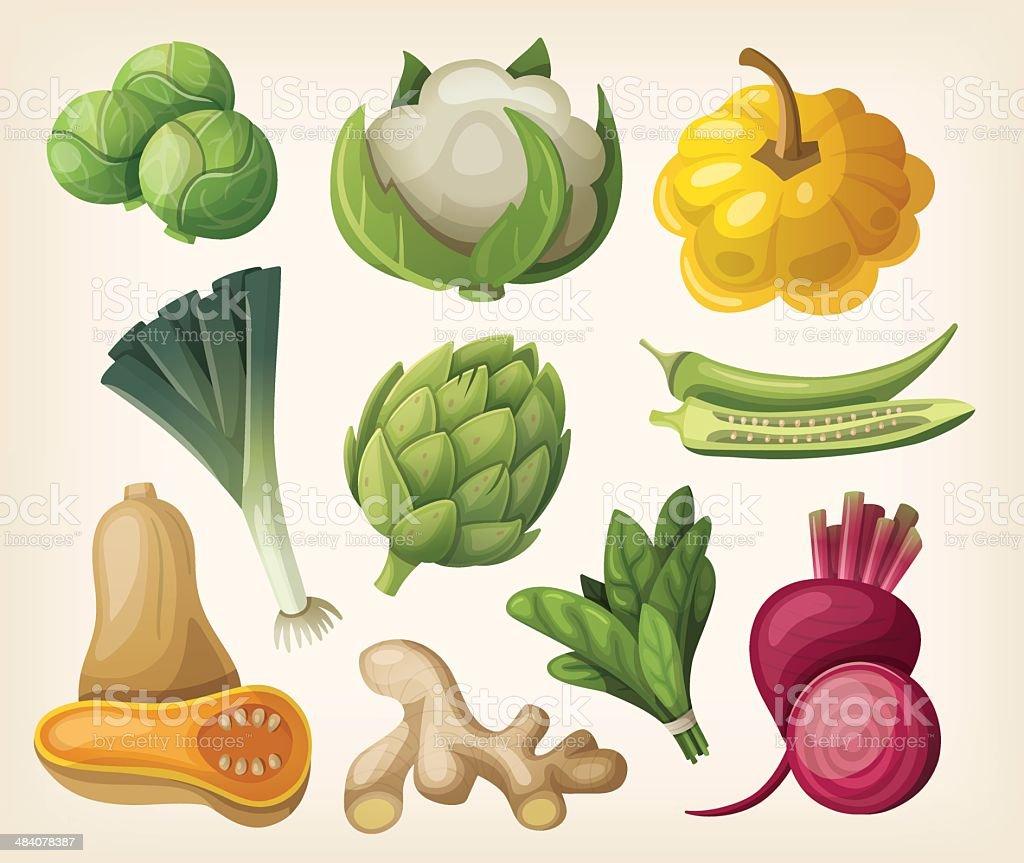 Set of exotic vegetables vector art illustration