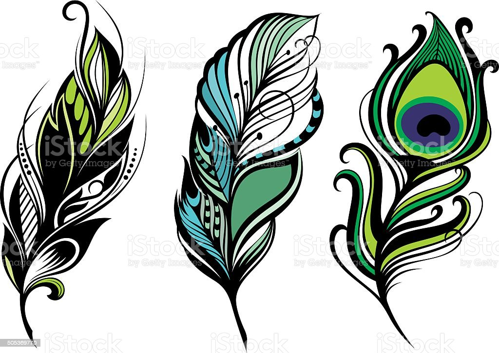 Set of feathers on a white background vector art illustration