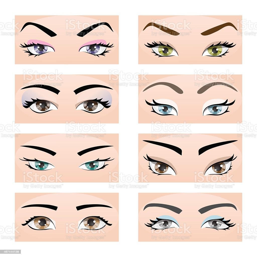 Set of female eyes and eyebrows. Vector illustration, eps10 vector art illustration
