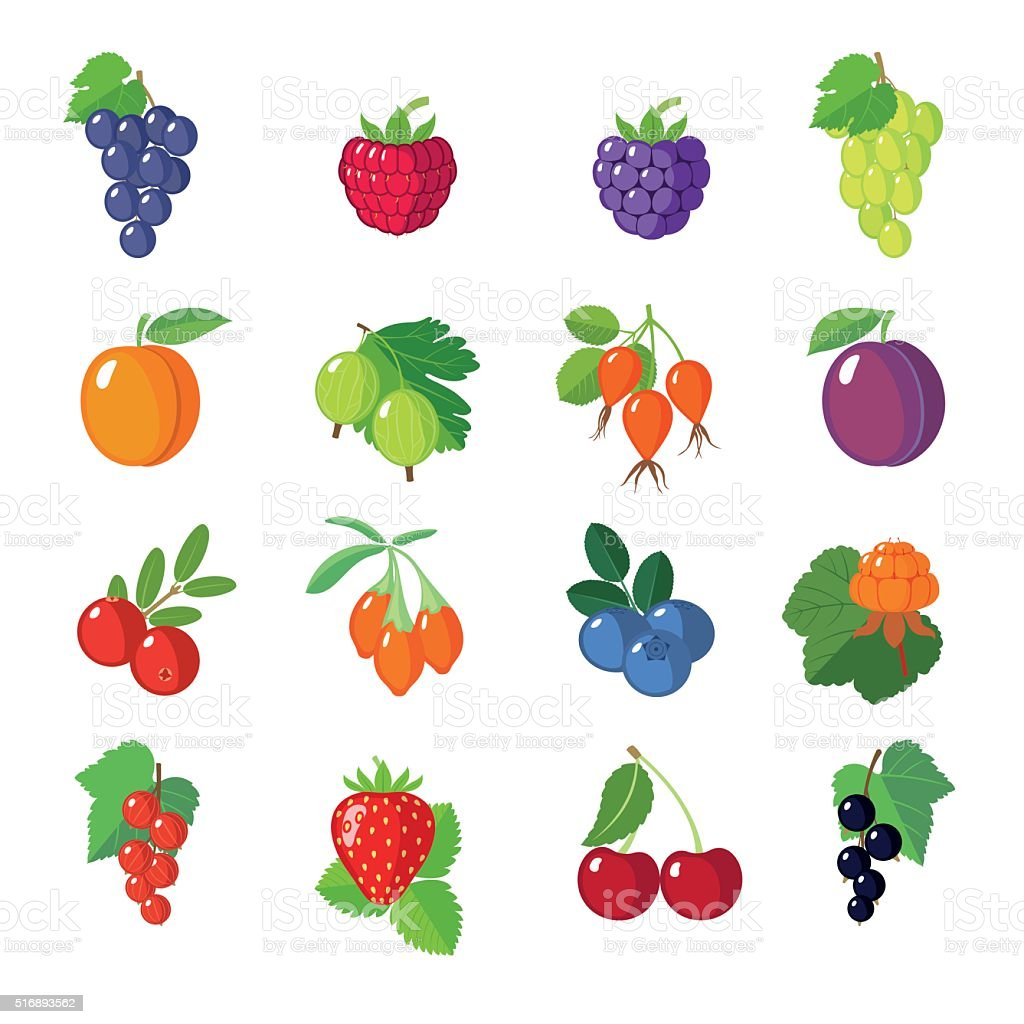 Set of flat berries. vector art illustration