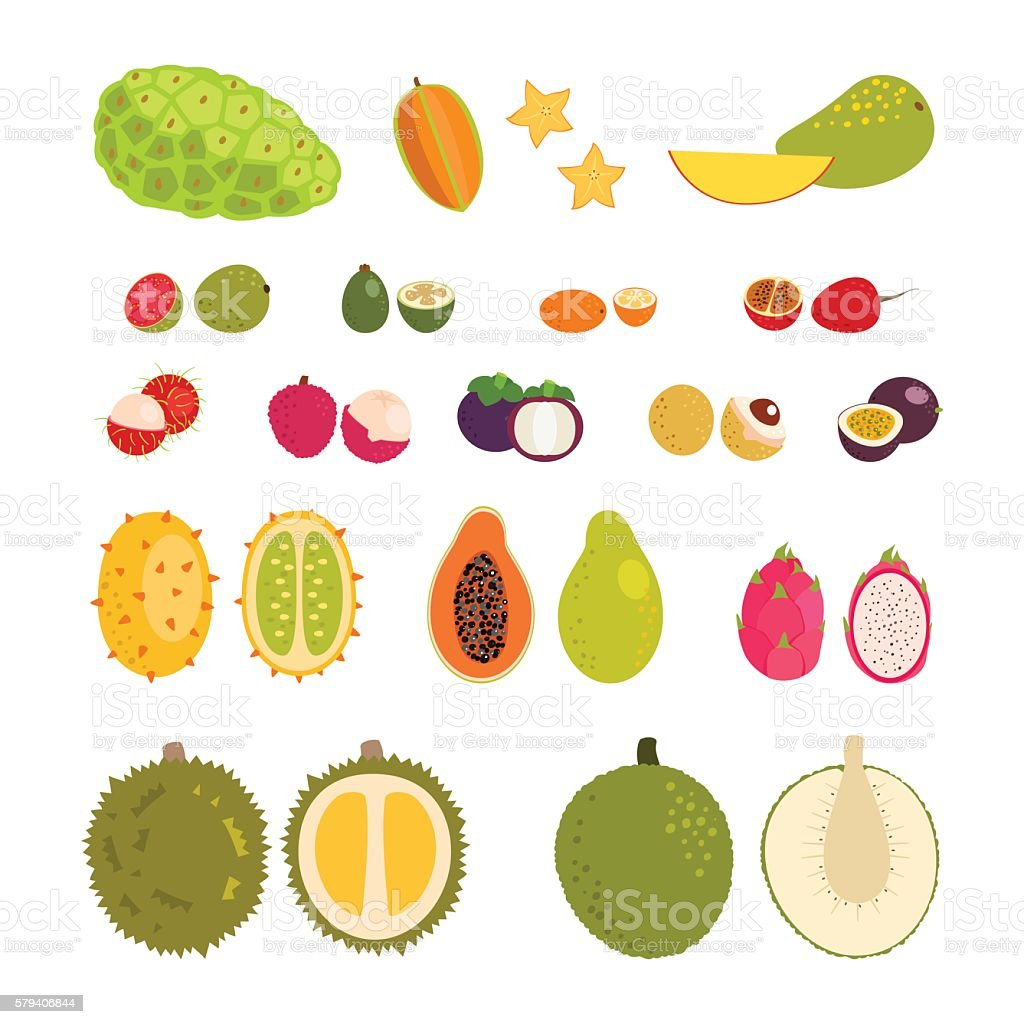 Set of flat cartoon vector illustration tropical exotic fruits vector art illustration