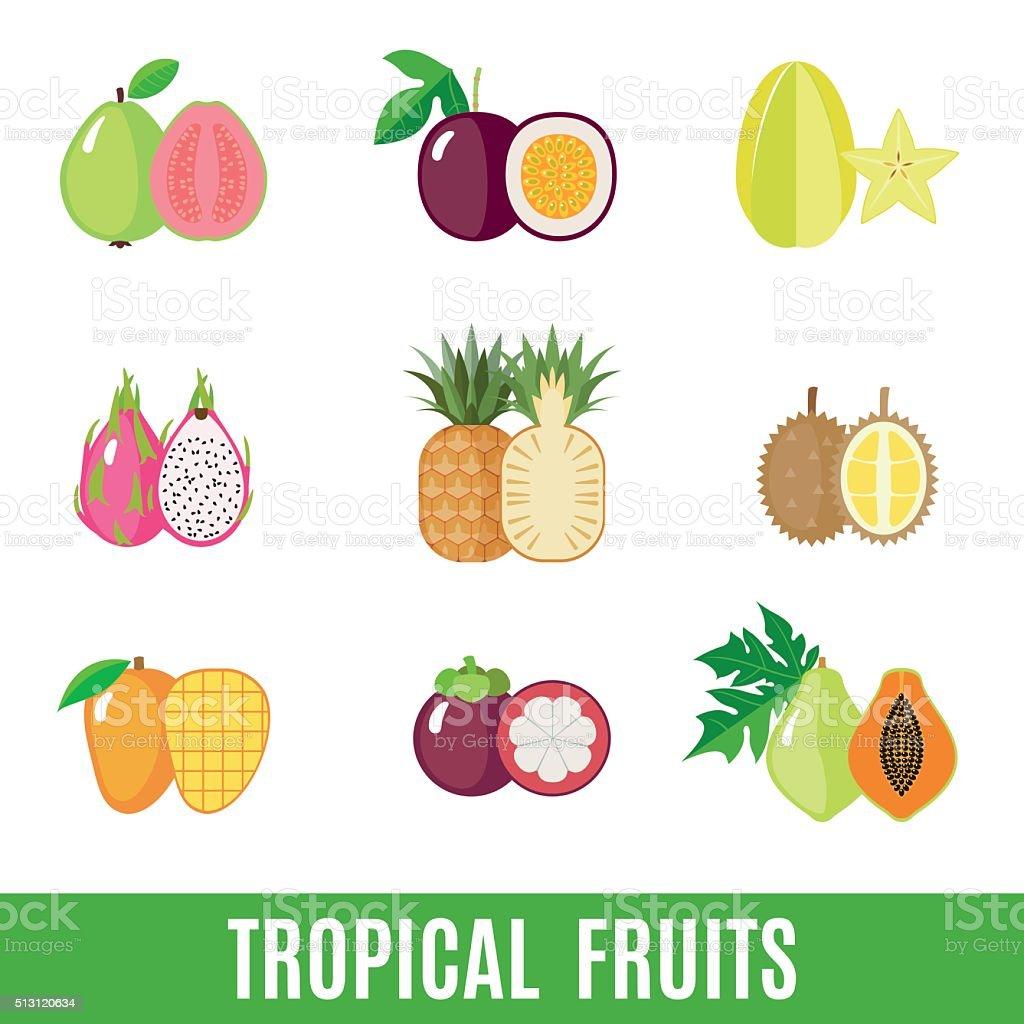Set of flat tropical fruits. vector art illustration