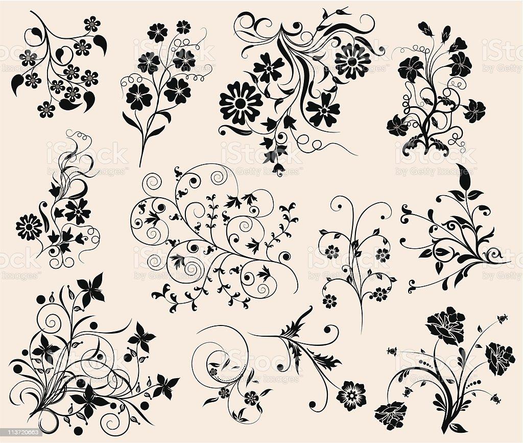 Set of floral elements for design vector art illustration