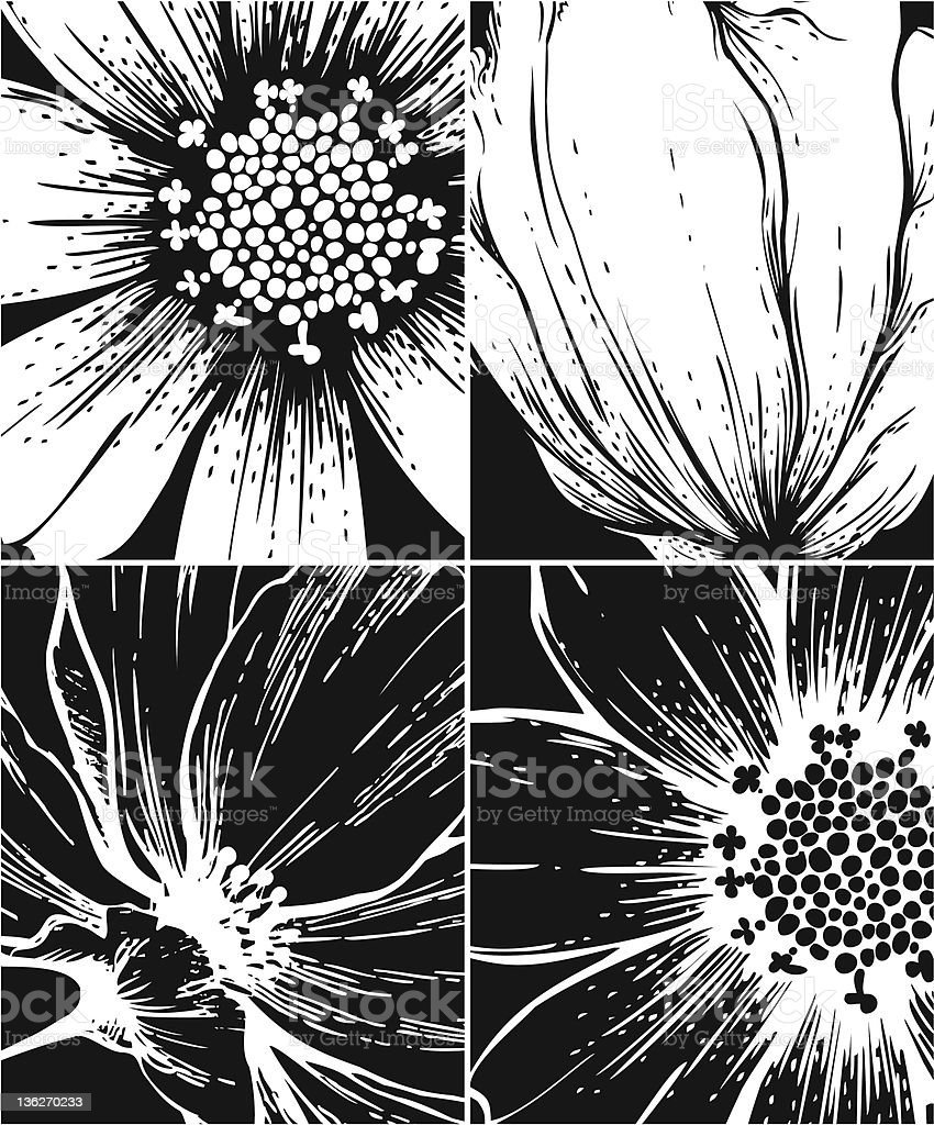 Set of floral graphic backgrounds royalty-free stock vector art