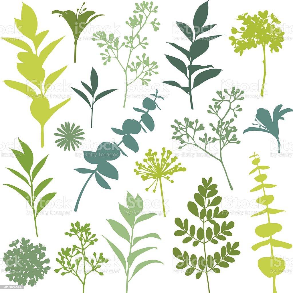 Set of Flower and Leaf Silhouette Design Elements vector art illustration