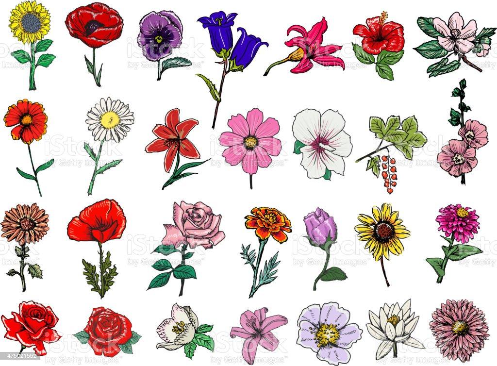 set of flowers vector art illustration