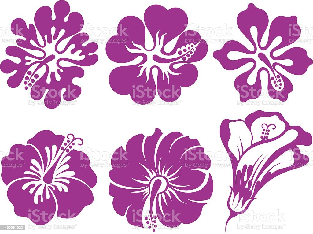 Set of flowers.Hibiscus vector art illustration