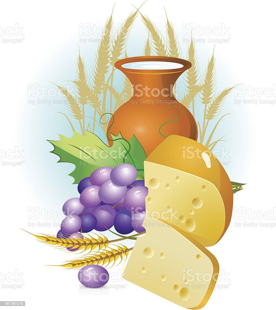 set of food, grapes, cheese ,milk vector art illustration
