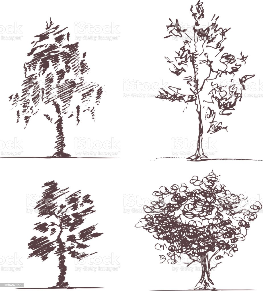 Set of four sketches trees vector art illustration