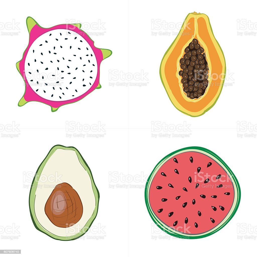 Set of fresh hand drawn fruits and vegetables and products vector art illustration