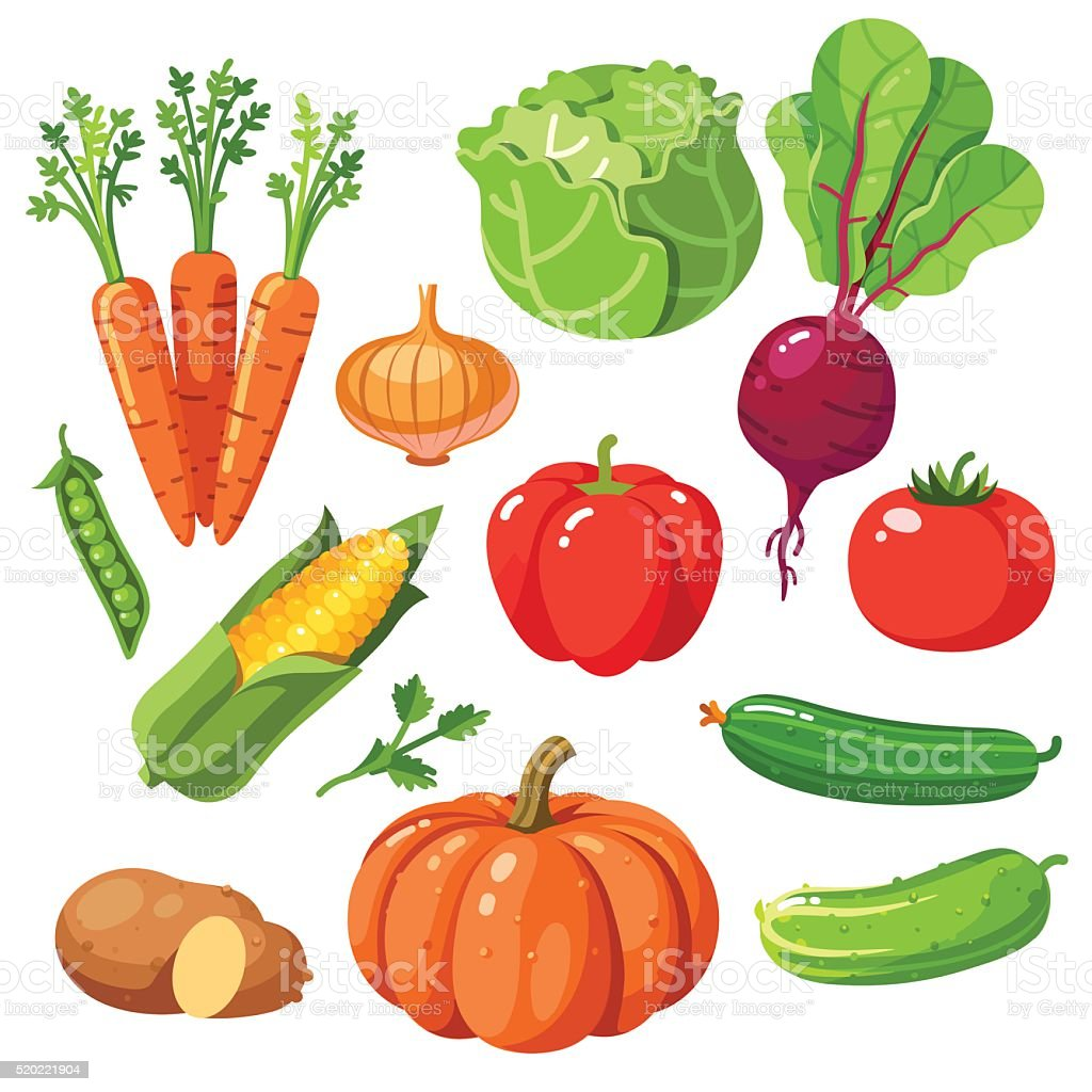 Set of fresh healthy vegetables vector art illustration
