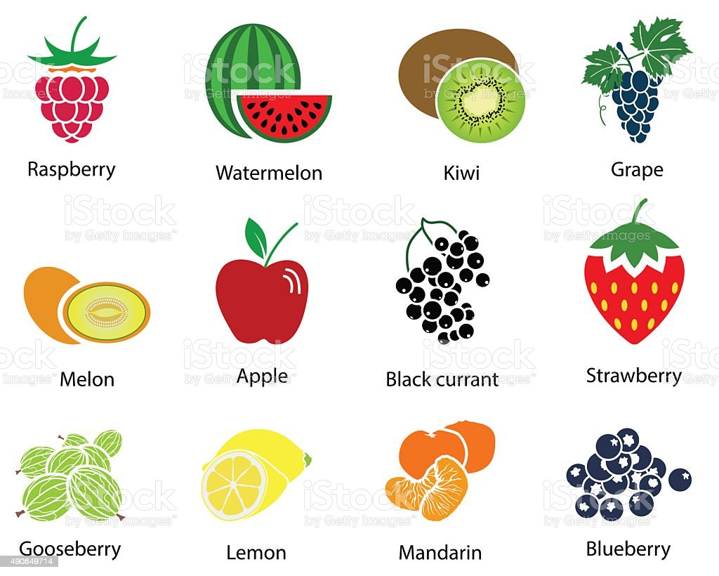 Set of Fruit Icons With Title vector art illustration